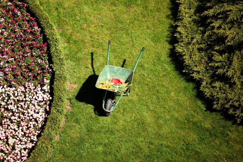 Quarto errore Simone Palmieri Gardens and Landscapes